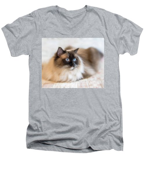 What Does She See Men's V-Neck T-Shirt