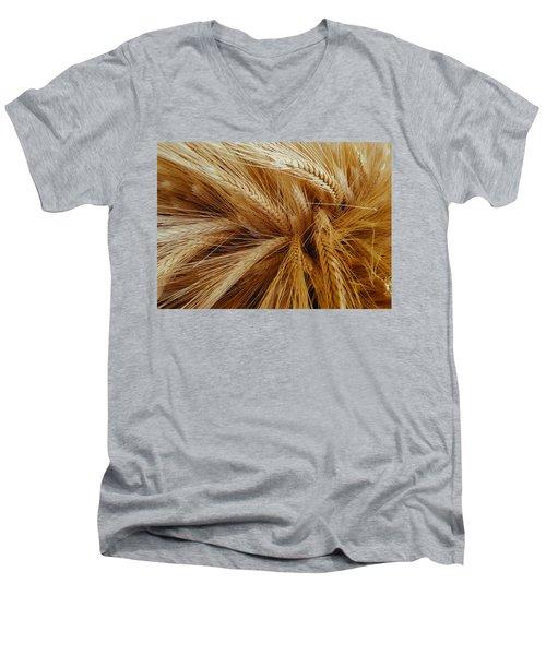 Wheat In The Sunset Men's V-Neck T-Shirt
