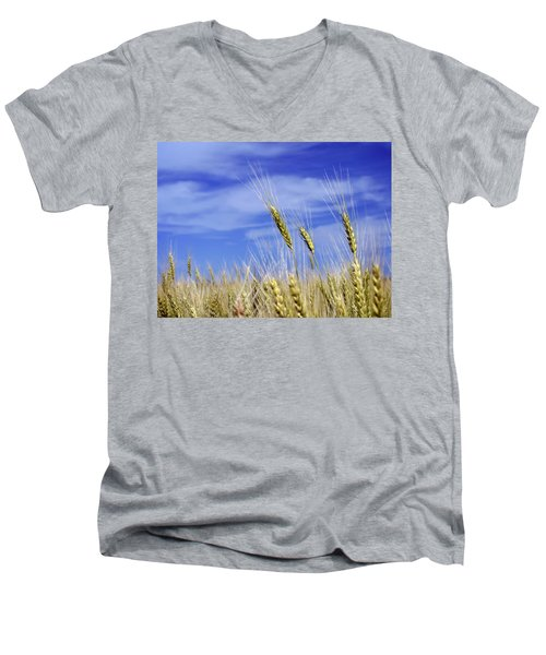 Wheat Trio Men's V-Neck T-Shirt by Keith Armstrong