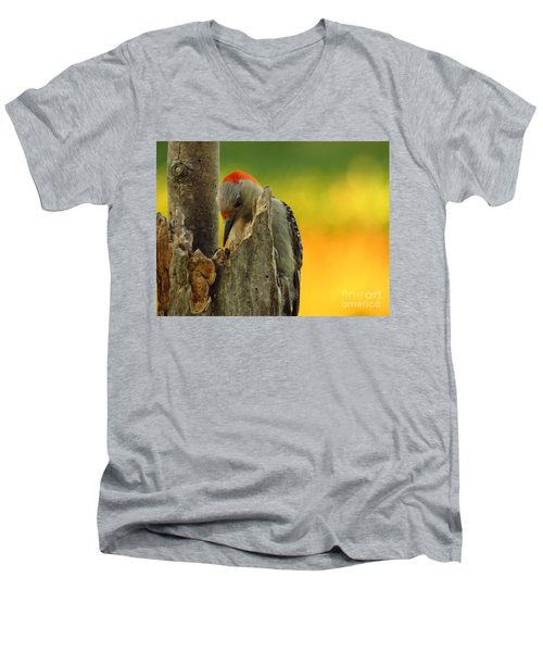 Where Did It Go Men's V-Neck T-Shirt