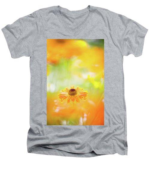 Whirligig Men's V-Neck T-Shirt