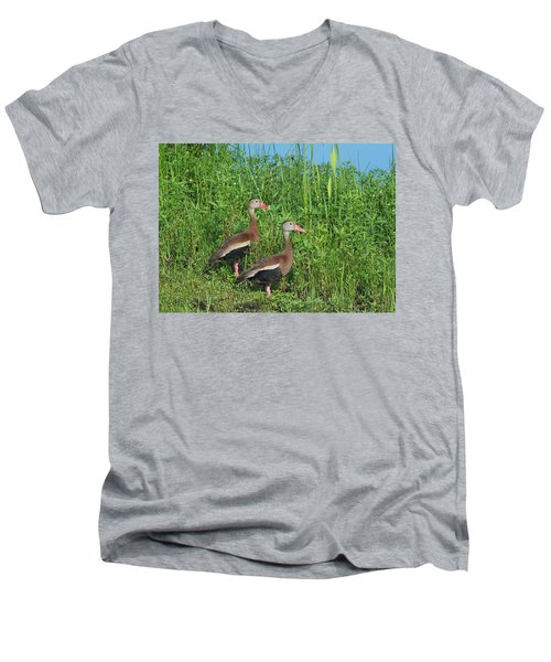 Whistling Ducks Men's V-Neck T-Shirt
