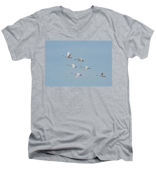 Whistling Swan In Flight Men's V-Neck T-Shirt