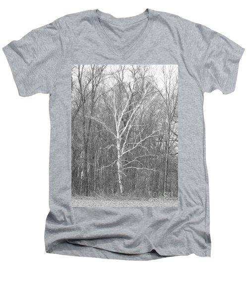 White Birch In Bw Men's V-Neck T-Shirt