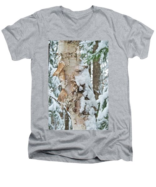 White Birch With Snow Men's V-Neck T-Shirt by Michael Peychich