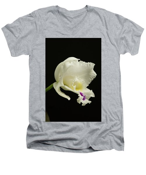 White Cattleya Orchid  Men's V-Neck T-Shirt