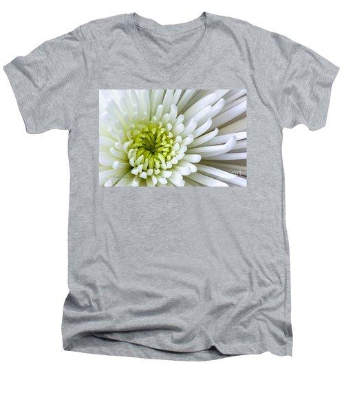 White Chrysanthemum Men's V-Neck T-Shirt