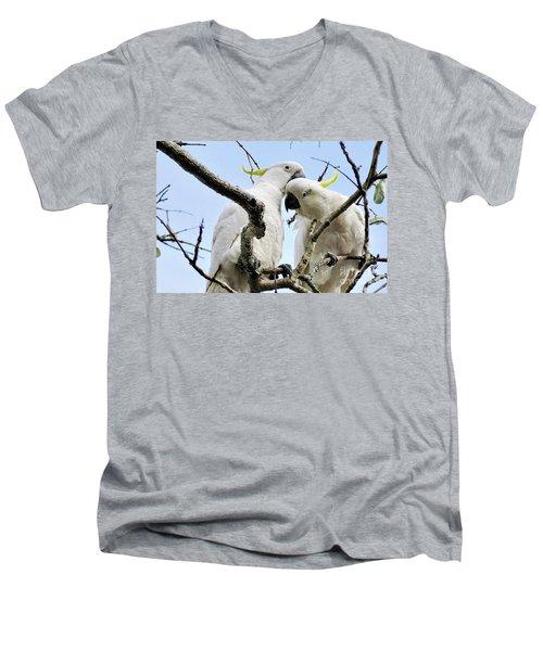 White Cockatoos Men's V-Neck T-Shirt