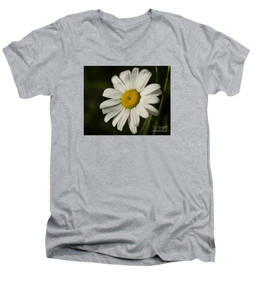 White Daisy Flower Men's V-Neck T-Shirt