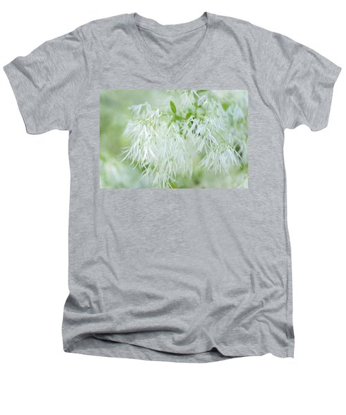 White Fringetree Men's V-Neck T-Shirt