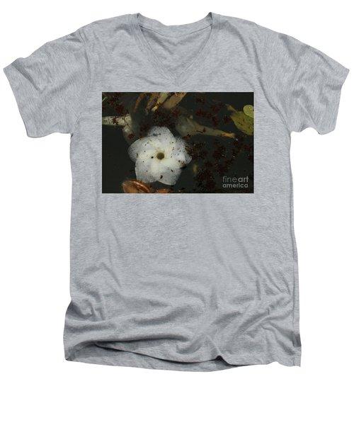 White Hawaiian Flower In The Pond Men's V-Neck T-Shirt