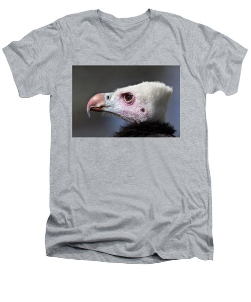 White-headed Vulture Portrait Men's V-Neck T-Shirt