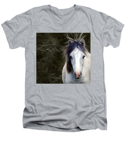 White Horse Men's V-Neck T-Shirt