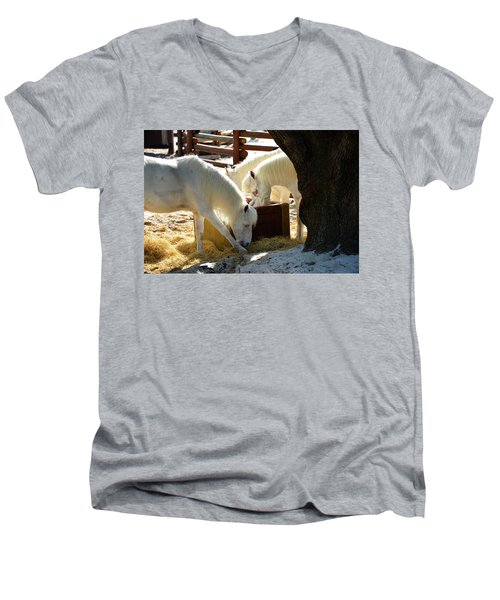 Men's V-Neck T-Shirt featuring the photograph White Horses Feeding by David Lee Thompson