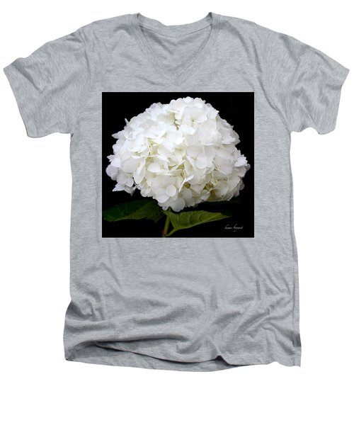 White Hydrangea Men's V-Neck T-Shirt by Kume Bryant