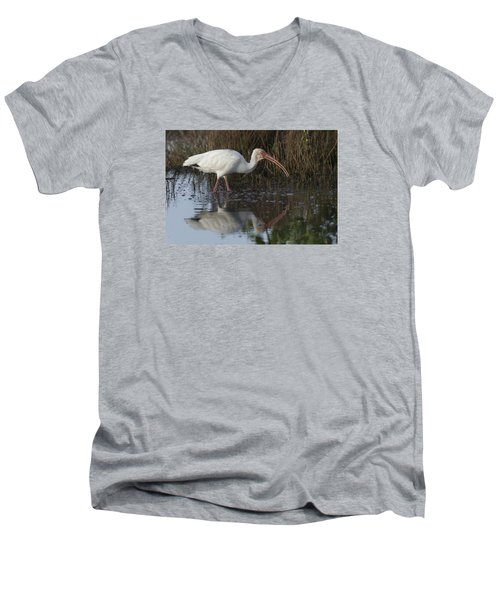 White Ibis Feeding Men's V-Neck T-Shirt