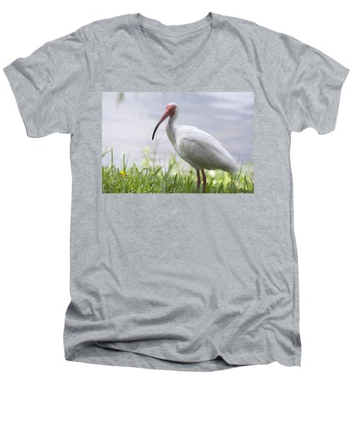 White Ibis  Men's V-Neck T-Shirt by Saija  Lehtonen