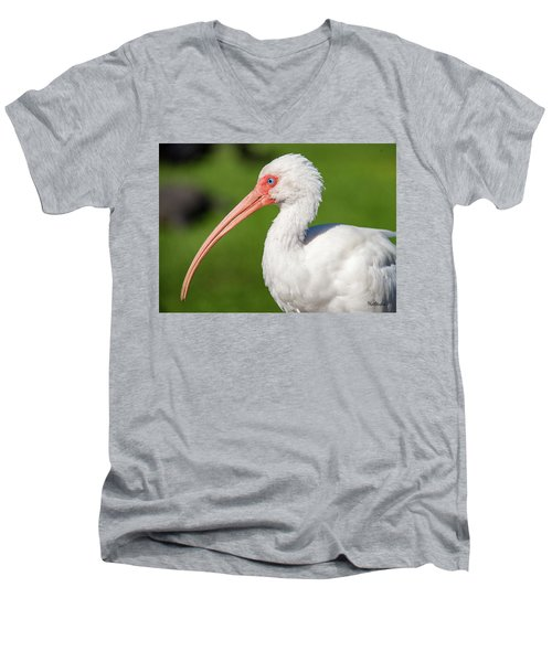 White Ibis Men's V-Neck T-Shirt