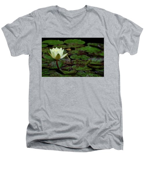 White Lily In The Pond Men's V-Neck T-Shirt