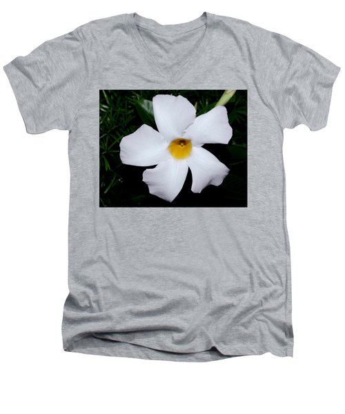 White Mandevilla Men's V-Neck T-Shirt