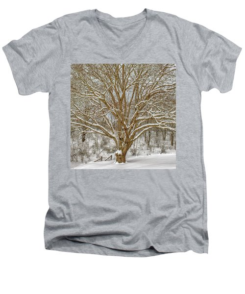 White Oak In Snow Men's V-Neck T-Shirt