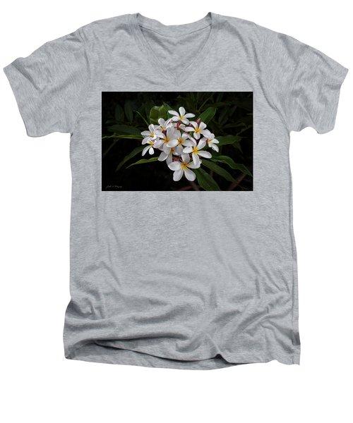 White Plumerias In Bloom Men's V-Neck T-Shirt