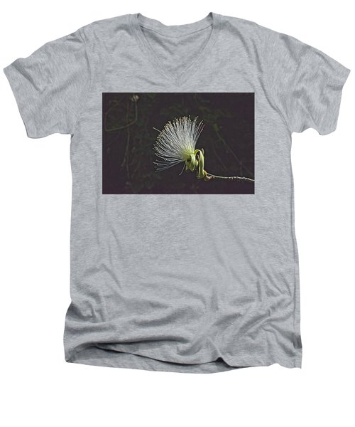 White Shaving Brush Pseudobombax Flower Men's V-Neck T-Shirt