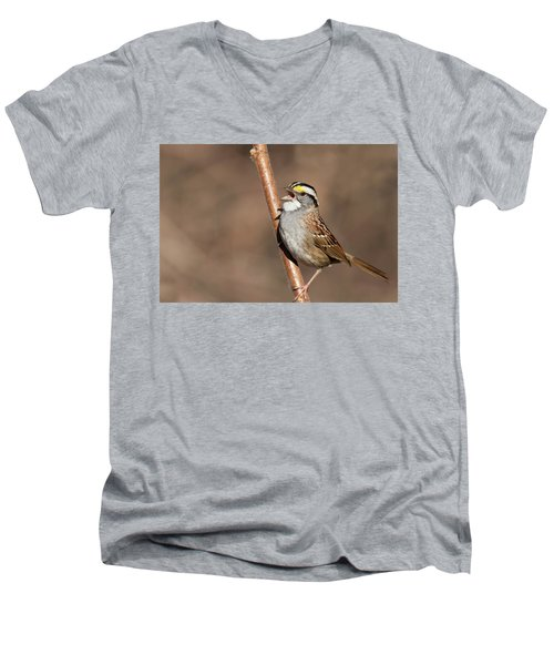 Men's V-Neck T-Shirt featuring the photograph White-throated Sparrow by Mircea Costina Photography