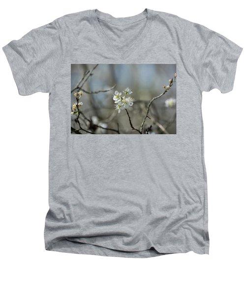 White Tree Bud Men's V-Neck T-Shirt