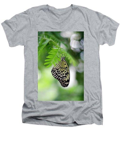 White Tree Nymph Butterfly 2 Men's V-Neck T-Shirt