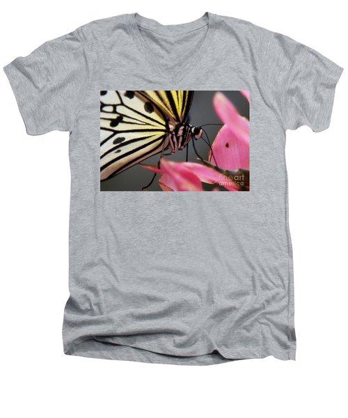 White Tree Nymph Butterfly Men's V-Neck T-Shirt