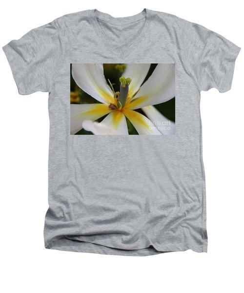 Men's V-Neck T-Shirt featuring the photograph White Tulip by Jolanta Anna Karolska