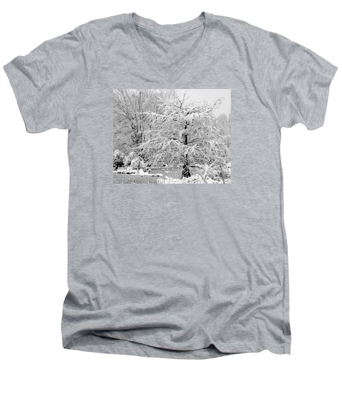 Whiteout In The Wetlands Men's V-Neck T-Shirt
