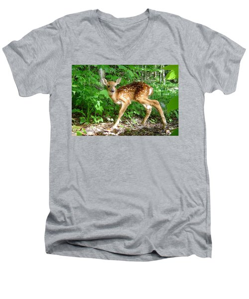 Whitetail Fawn Men's V-Neck T-Shirt