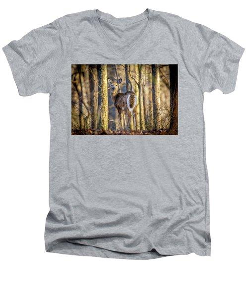 Whitetail Winter Morning Men's V-Neck T-Shirt