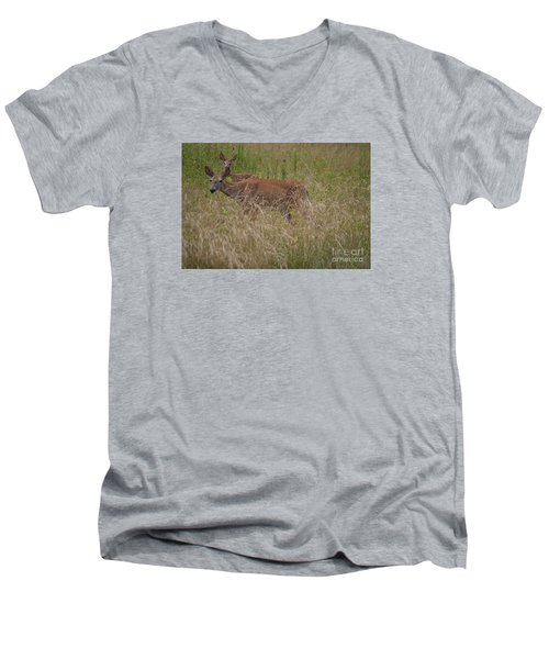 Whitetail With Fawn 20120707_09a Men's V-Neck T-Shirt by Tina Hopkins