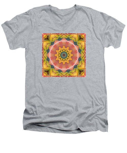 Wholeness Men's V-Neck T-Shirt by Bell And Todd