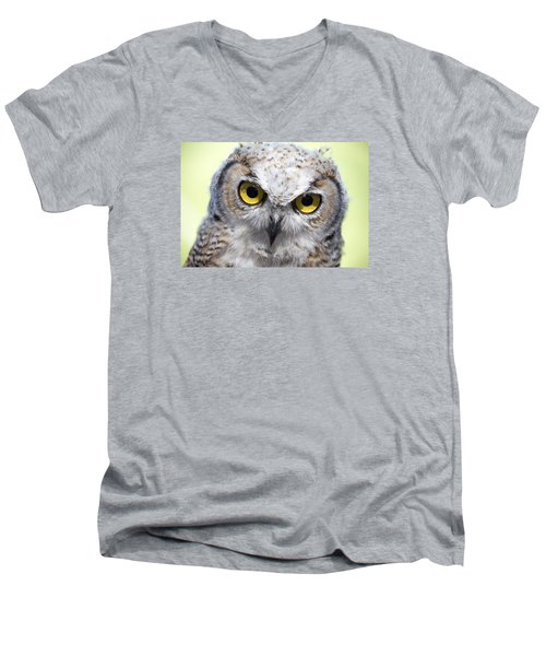 Whooo Men's V-Neck T-Shirt
