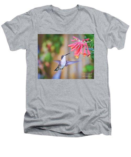 Wild Birds - Hummingbird Art Men's V-Neck T-Shirt