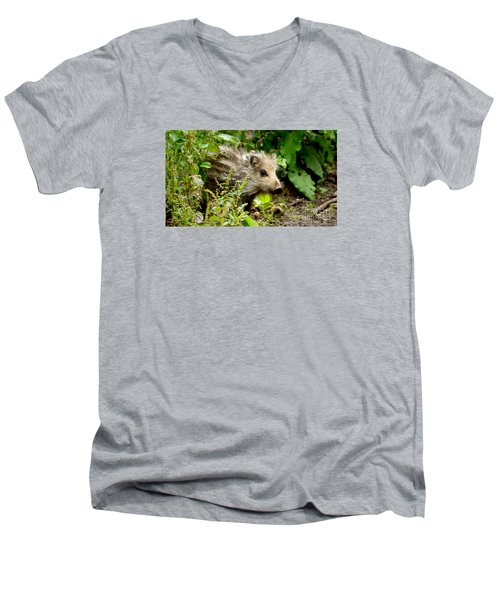 Wild Boar Baby Men's V-Neck T-Shirt