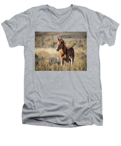 Wild Colt In Sand Wash Basin - Northwest Colorado Men's V-Neck T-Shirt