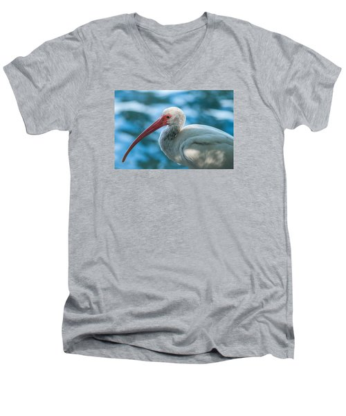 Wild Eyed Ibis Men's V-Neck T-Shirt