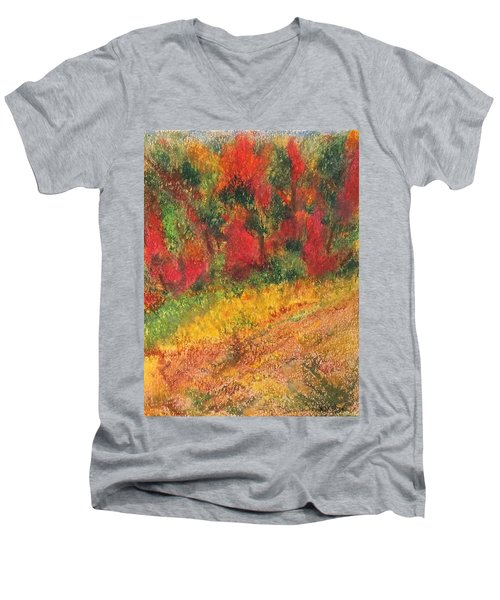 Wild Fire Men's V-Neck T-Shirt