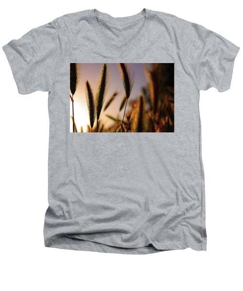 Wild Grasses At Sunset Men's V-Neck T-Shirt