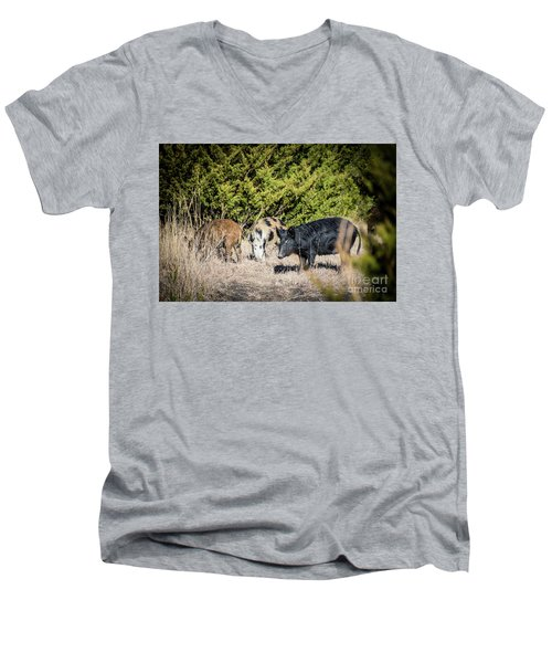 Wild Hogs Men's V-Neck T-Shirt