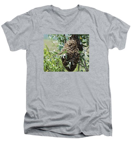 Wild Honey Bees Men's V-Neck T-Shirt