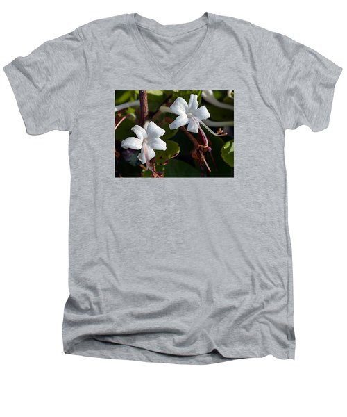 Wild Honeysuckle Men's V-Neck T-Shirt by Kenneth Albin