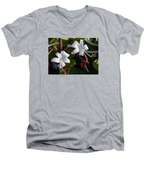 Wild Honeysuckle Men's V-Neck T-Shirt