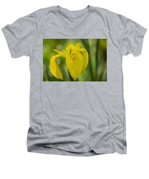 Wild Yellow Iris Men's V-Neck T-Shirt