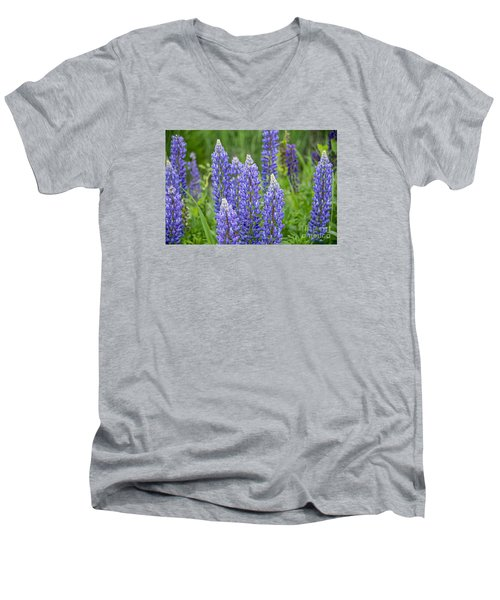 Men's V-Neck T-Shirt featuring the photograph Wild Lupine by Alana Ranney